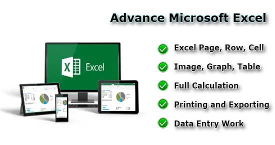 advance-microsoft-excel-webson-job