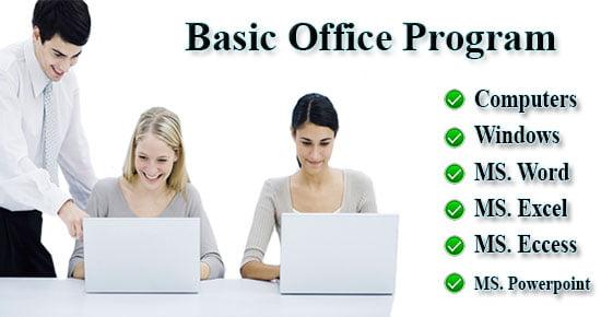 webson-job-basic-office-program