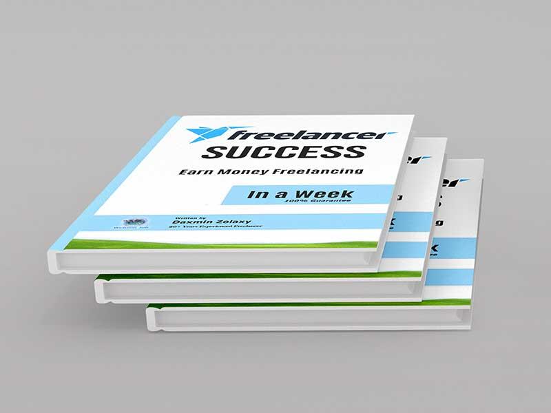 Freelancer Success
